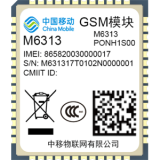 M6313(GSM,2018)