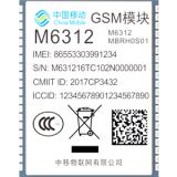 M6312(GSM,2017)